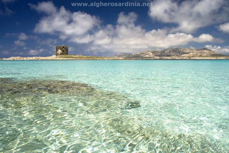 Le spiagge pi belle della sardegna l 39 essenza oasi for Isola che da il nome a un golfo della sardegna