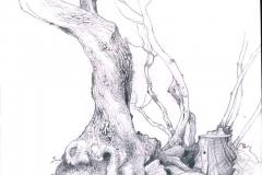 3-NATURA-ALBERO-TREE-SARDEGNA-SARDINIA-ILLUSTRATION-ILLUSTRATA-ILLUSTRATORE-NESME-DISNEY