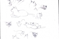 5-CATS-GATTI-ILLUSTRATION-ILLUSTRATA-ILLUSTRATORE-NESME-DISNEY