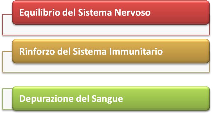 stimolazione2