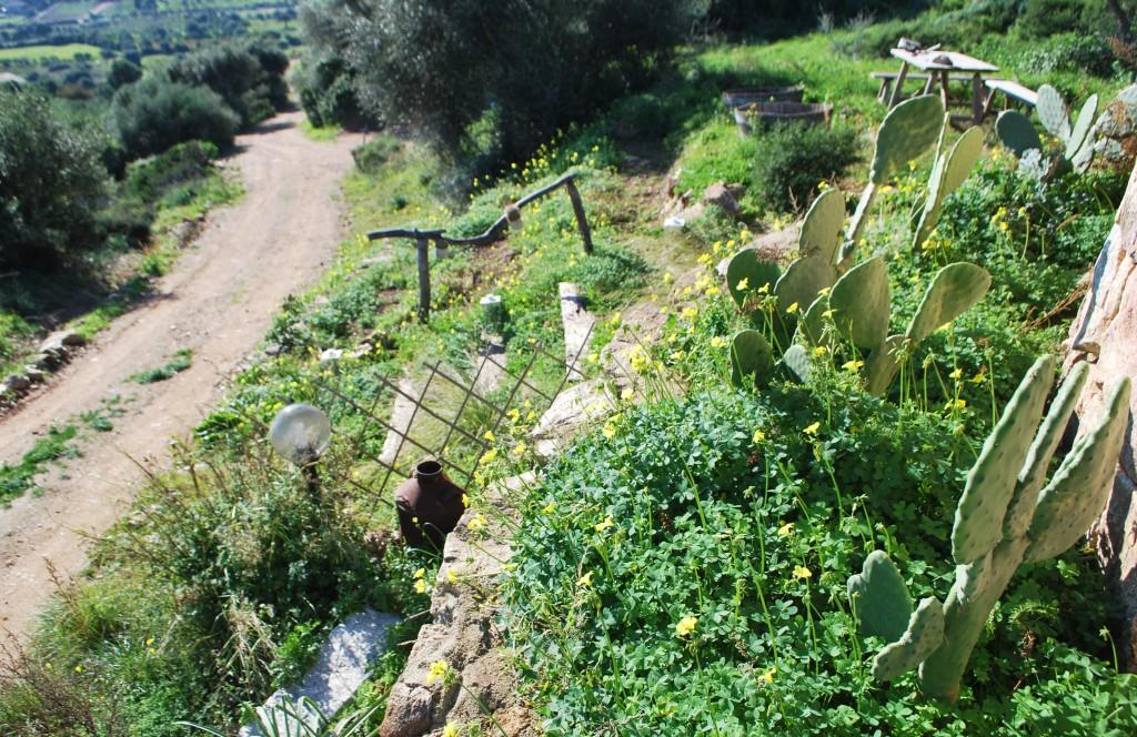estate Sardegna