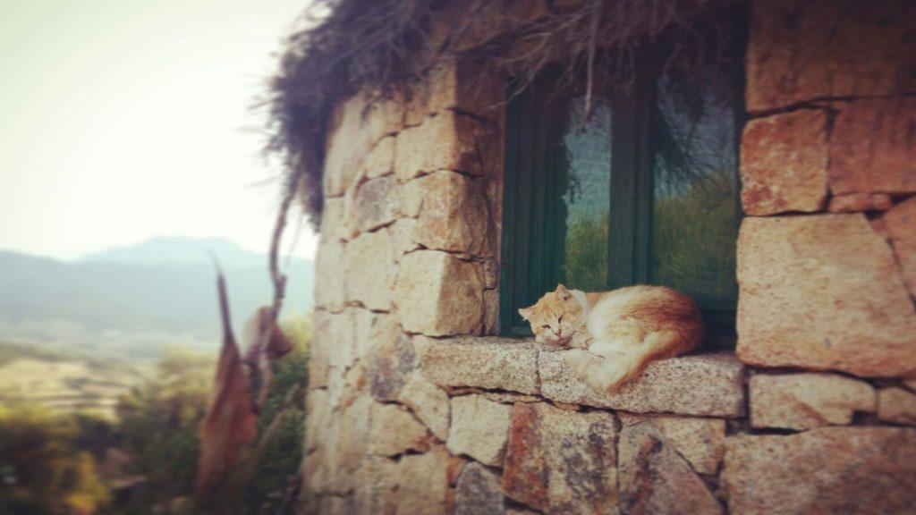 relax sardinia