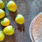 frutti antichi della sardegna