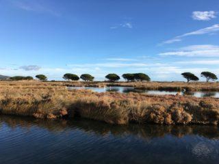 Il Rio Posada nella Convenzione Internazionale Ramsar!