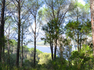 "Primavera in Sardegna: ""Tepilora Parco Aperto"""