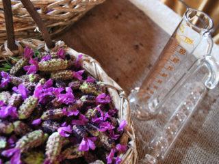 Perché offrire aromaterapia gratis in camera?